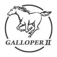 Luftfilter Galloper